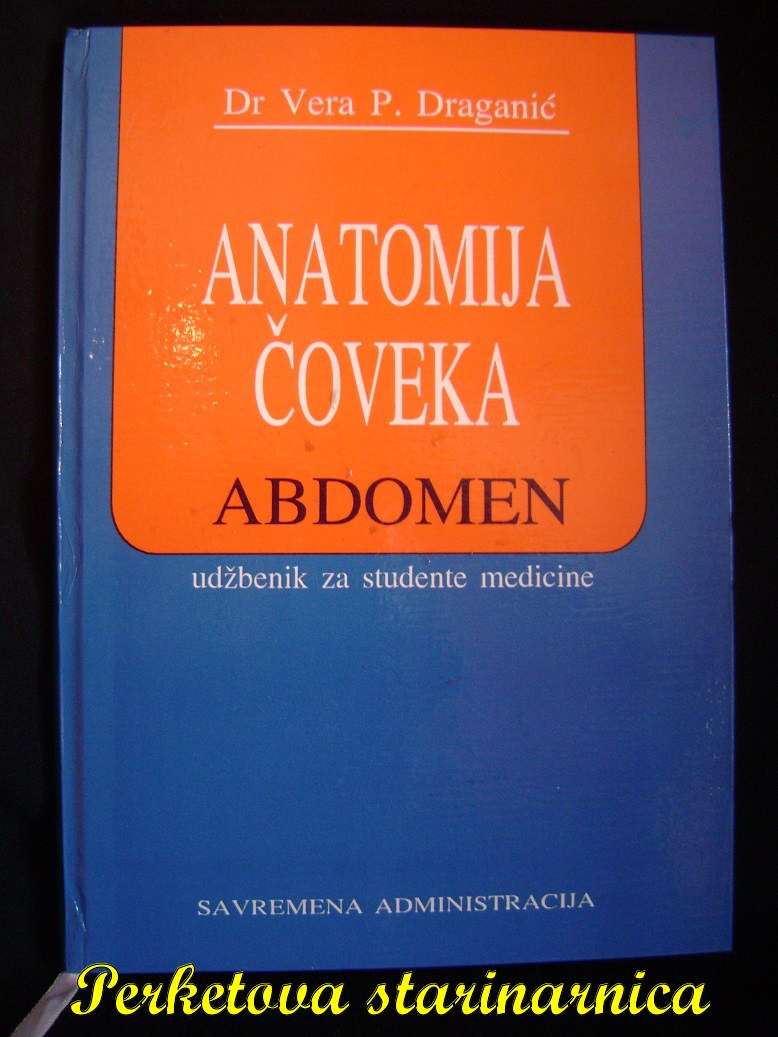 Anatomija_coveka_abdomen.jpg